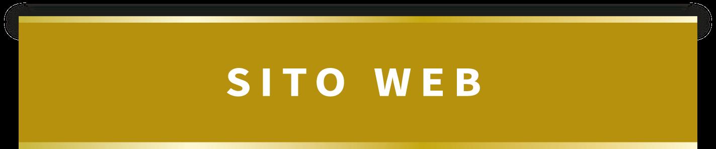 sito-web-pulsante